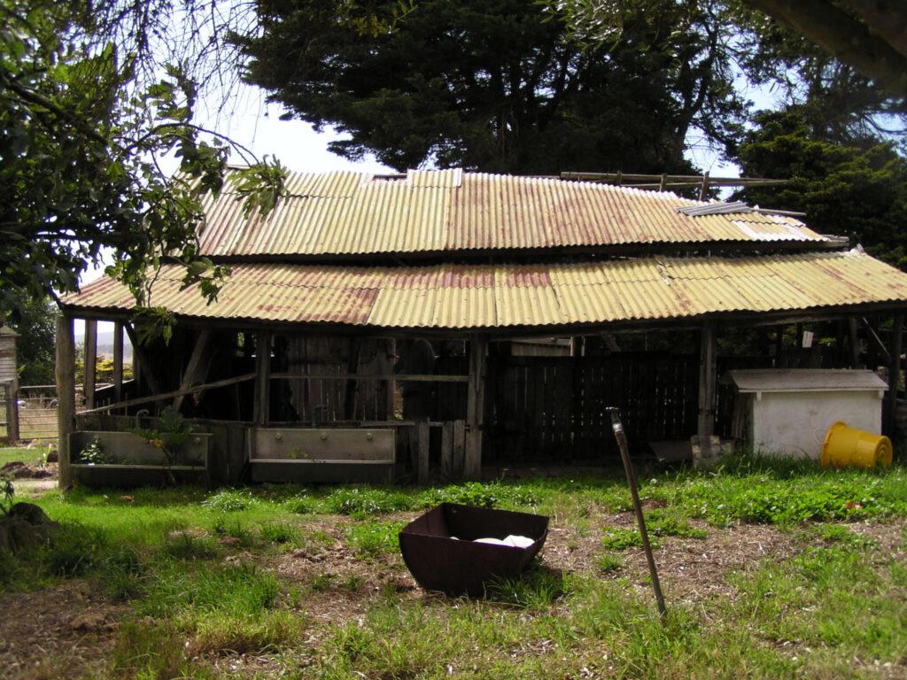 Old shearing shed at Mac'sfield